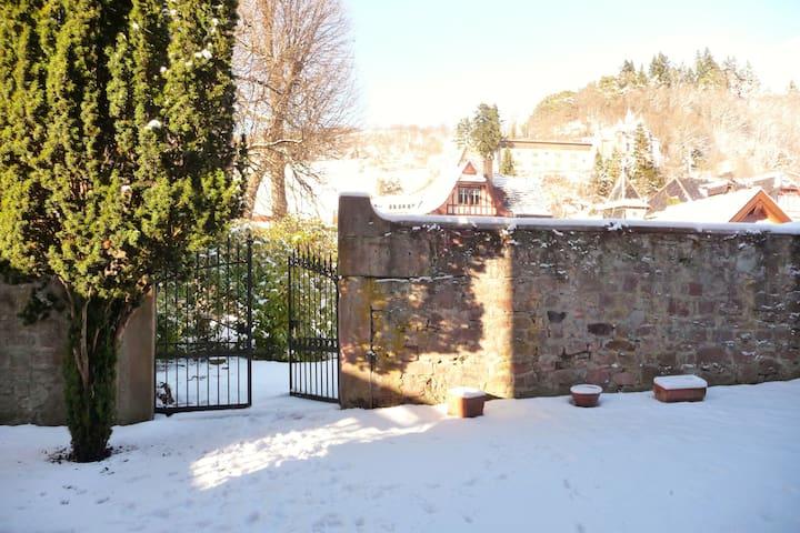 """Gîte """"Le Brézouard"""" - Sainte-Marie-aux-Mines - Appartement"""