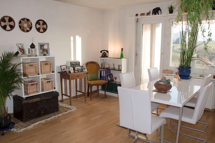 Friendly, sunny and cosy apartment - Illnau-Effretikon - Lägenhet