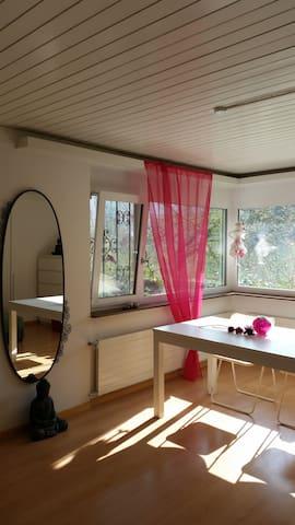 1-Zi. Appartement mit Charme - Rheinfelden - Leilighet