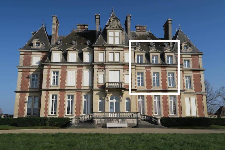 Duplex dans Château 40mn de Paris, 20mn de Disney - Ocquerre - Castelo