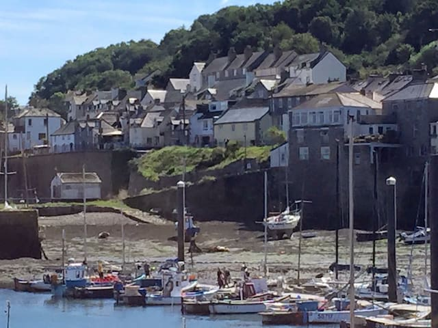 Cornish cottage near the old harbour, Newlyn - Newlyn