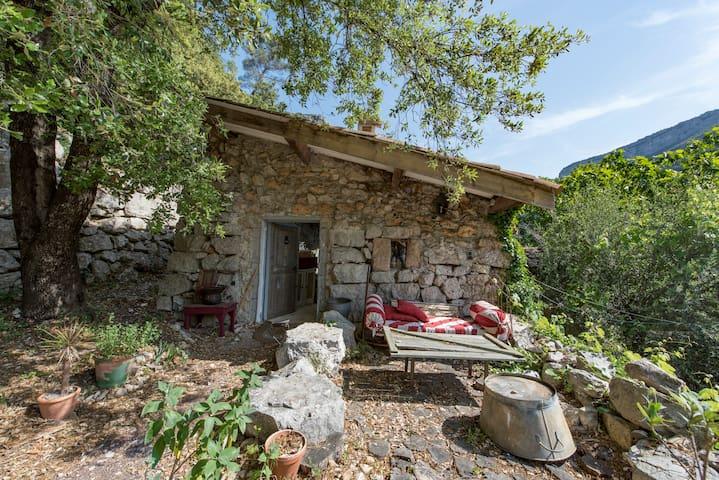 The Shepherd's Cottage in paradise - Mons en Provence  - Casa