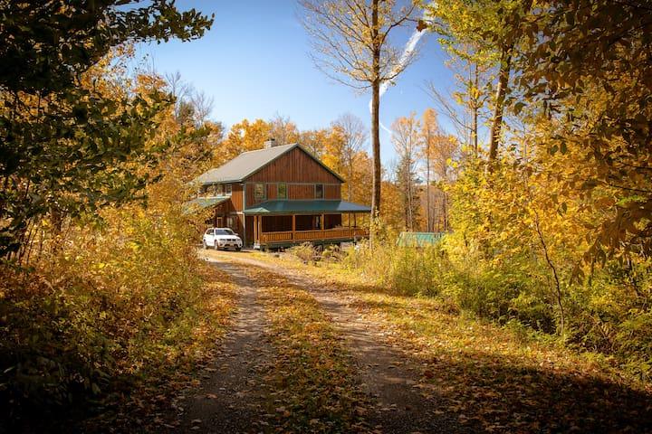 Wild Fern Lodge - Bainbridge - Oda + Kahvaltı