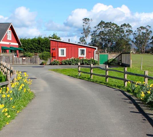 Red Barn Cottage - Ferndale - Ferndale - Gjestehus