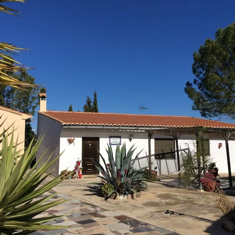 Casita near Xativa, Valencia - L'Alcudia de Crespins - Casa