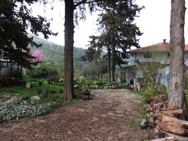 Huge & Unique Villa in the Forest - Amuka - Villa