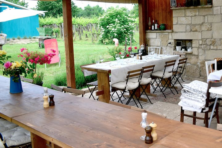 Vineyard Guesthouse - Etyek - Maison
