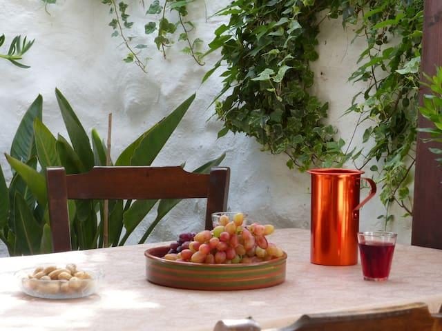 Steinhaus in kleinem Dorf - Agia Fotia/ Pirgos - Daire