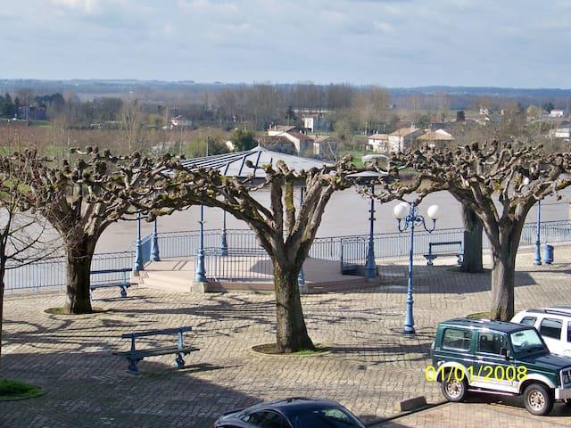 Gîte coté Garonne à Tonneins - Tonneins - Apartamento
