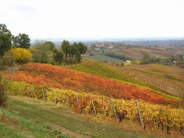 La Petite Toscane: entre Art, Histoire et Nature - Sala Mandelli - Rumah