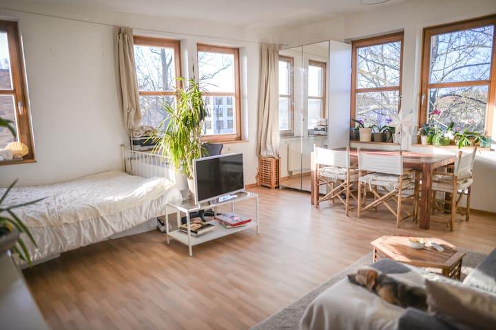 sehr helle Wohnung nur 5 Minuten weg von Allem :) - Potsdam - Appartement