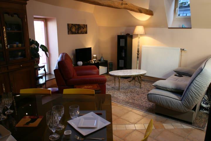 appartement meublé 52m2 au calme centre historique - Laon - Appartement
