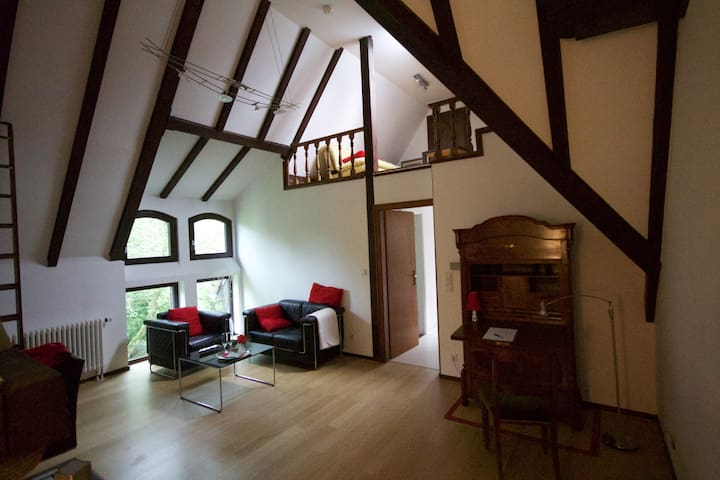 Exclusive Loft nearby the museum-island Hombroich - Neuss - 別荘
