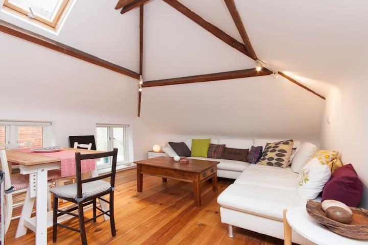 Harry Baskerville's Hay Barn - Ashburton - Lägenhet