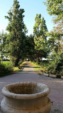Agriturismo Arco Antico in campagna - Taneto - 別荘