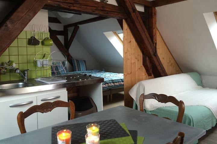 """Studio """"so heimlich"""" proche Strabourg - Oberhoffen-sur-Moder - Appartement"""