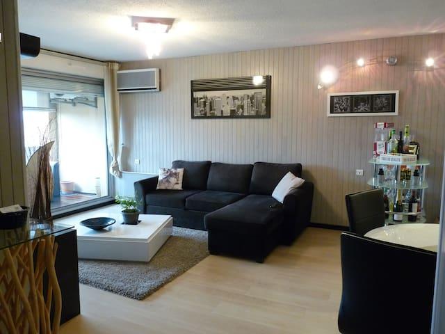 Bel appartement en centre ville - Albi - Daire