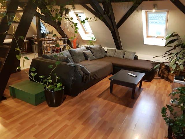 Appartement 2 Pièces Atypique - Mulhouse - Lägenhet