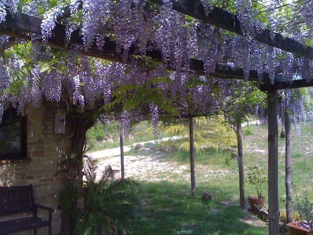 Casa Bella Vista - Montottone - Ev