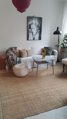 Lovely big room in central Malmö - 馬爾默 - 公寓
