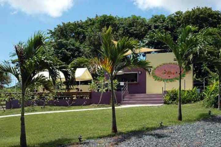 Bio Bay Overnight Stay - Vieques - Appartement