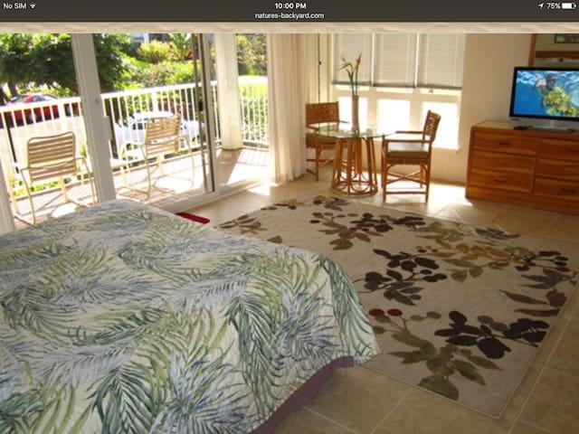 A great north shore condo-resort - Princeville - Leilighet