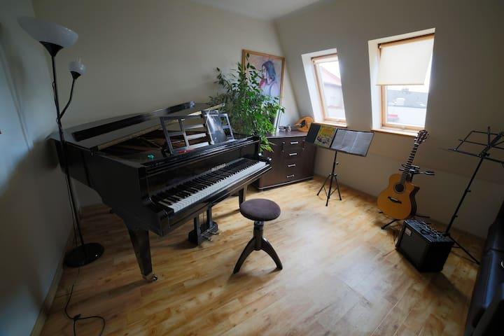 Muzyczny pokoik w Żywcu na osobnym piętrze - Żywiec