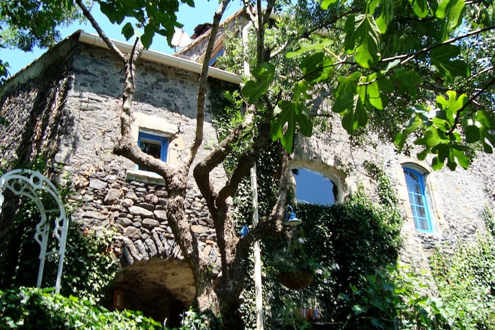 6 persoons landhuis met zwembad - Pézènes-les-Mines