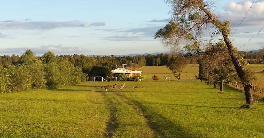Summerfield, Lovedale, Hunter Valley NSW - Rothbury - Huis