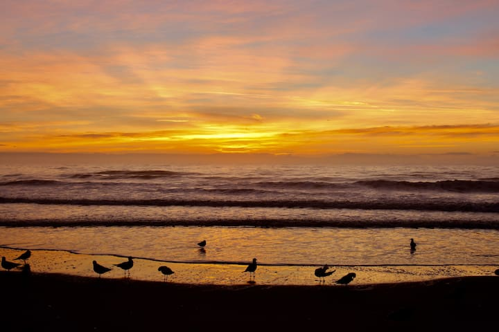 Nice and convenient - Surfside Beach - Társasház