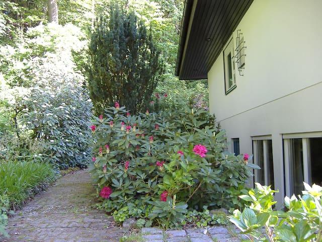 Quiet non-smoking flat - Uttenreuth - Casa
