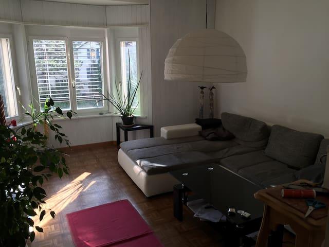 Appartement Lumineux  Luminous Flat - Bienne - Leilighet