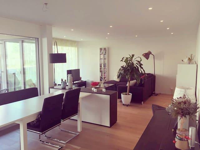 Modern room close to Baden & Zurich - Neuenhof - Leilighet