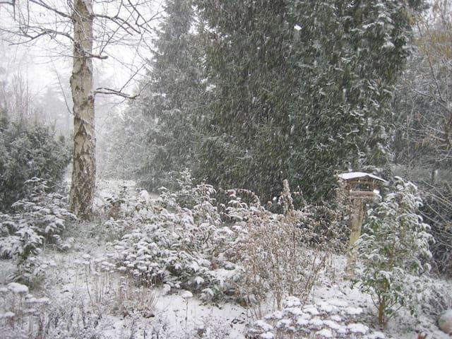 Chambre double à l'orée de la forêt - Chaumontel - Дом