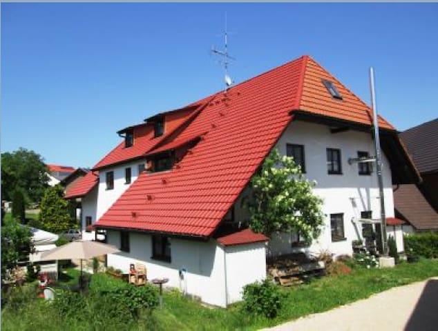 Günstiges Appartment in Niederwihl - Görwihl - Lägenhet