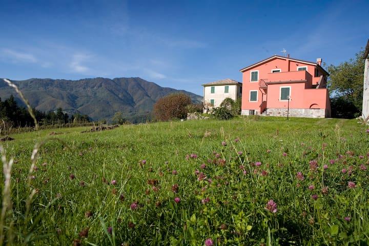 Casa per vacanze  Poggio Temossi - Temossi - Lägenhet