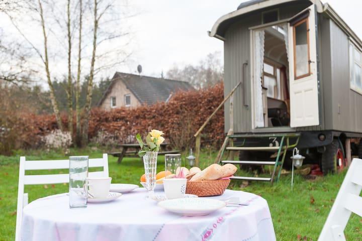 Romantic gipsy wagon - Kranenburg - Andre