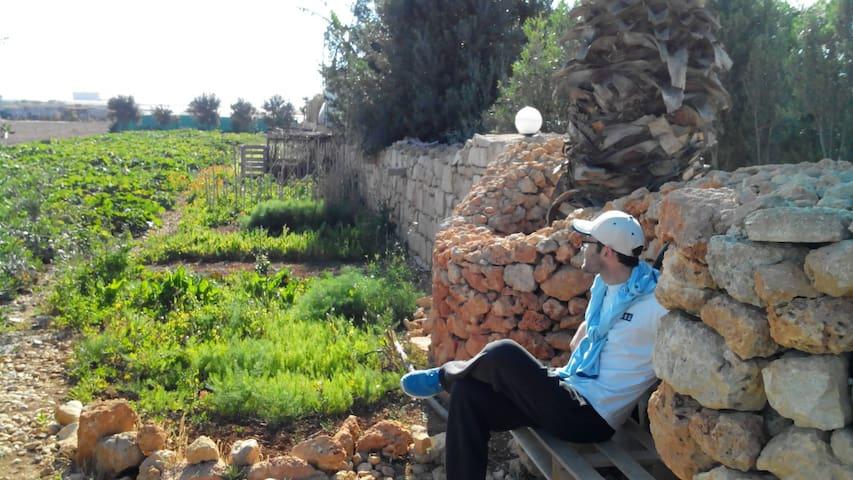 Village life, countryside & beaches - L-Imġarr - Rumah