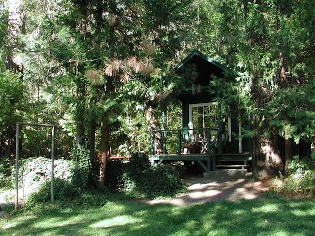 Little River Cabin - Trinity Center - Stuga