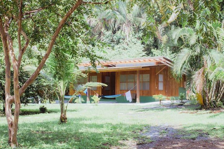 Ocean Front Jungle Cabin w/ Kitchen and breakfast - Pavones - Blockhütte