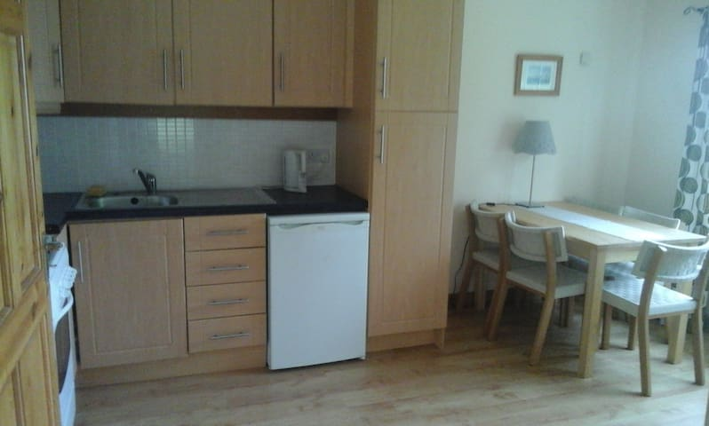 Compact,well planned apt, suit small small family. - Riverstown - Appartement