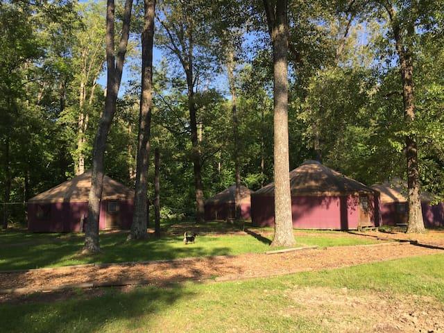 Camp Manitowa-Yurt Villages - Benton - Iurta