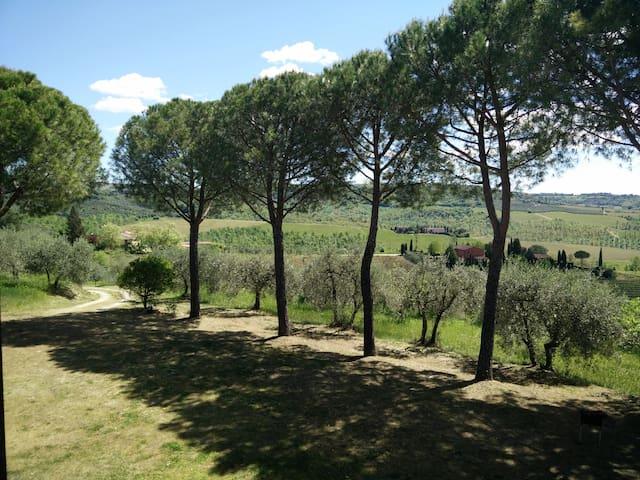 Villa Wanda CountryHouse in Tuscany - チェルタルド - 別荘