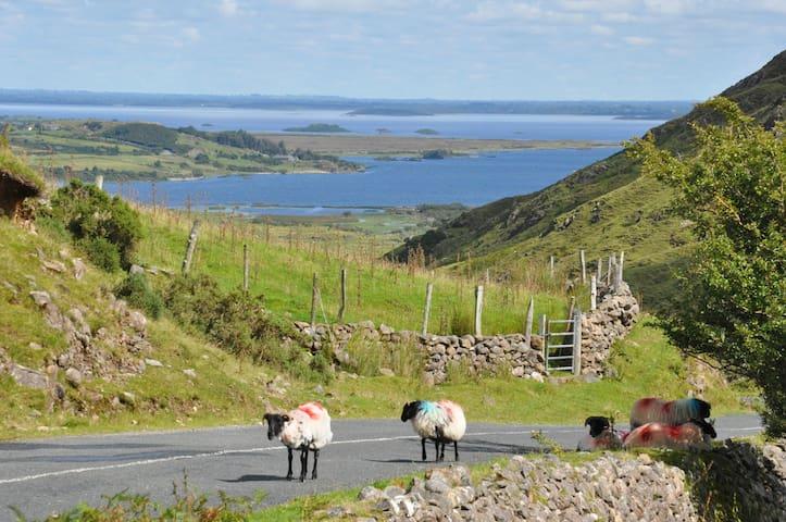 Au coeur des lacs du Connemara - Clonbur - Casa