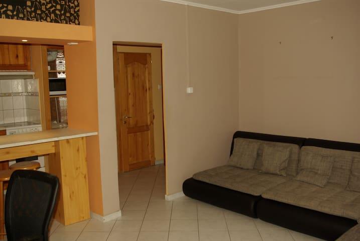 Charming apartment near city centre - Budapeşte - Daire