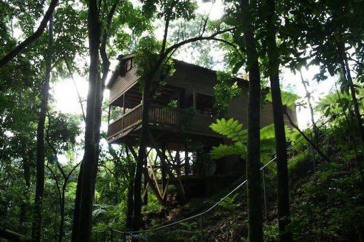 Tree House - Utuado - Hus