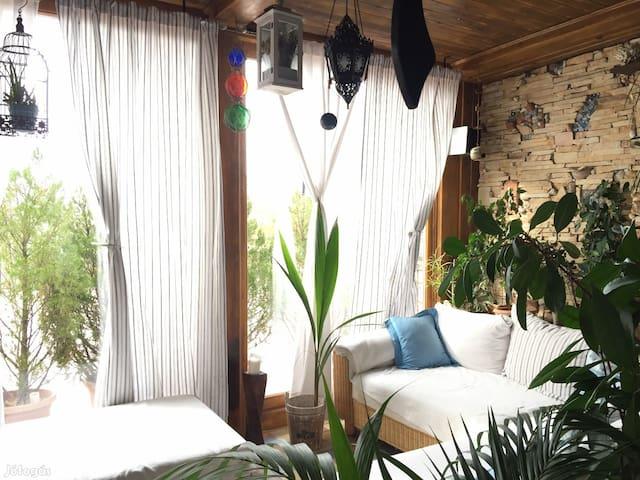 Villa Leányka -  full house - Eger - Hus