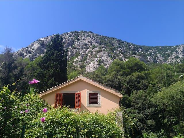 Lobagola Mediterra - Trstenik - House