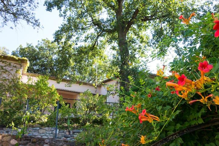 Pequeño paraíso natural a los pies del Montseny - Gualba - Casa de huéspedes
