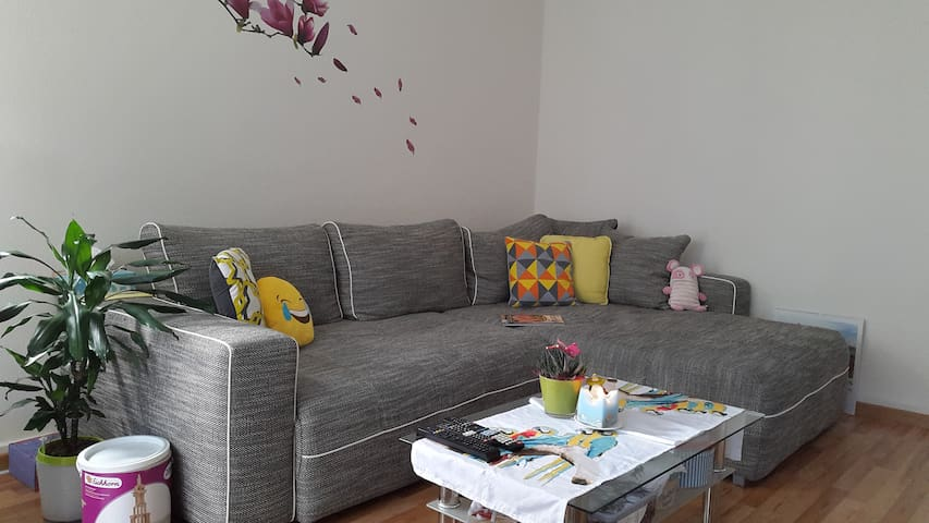 Charming apartment, 10min from city center - Zúrich - Departamento